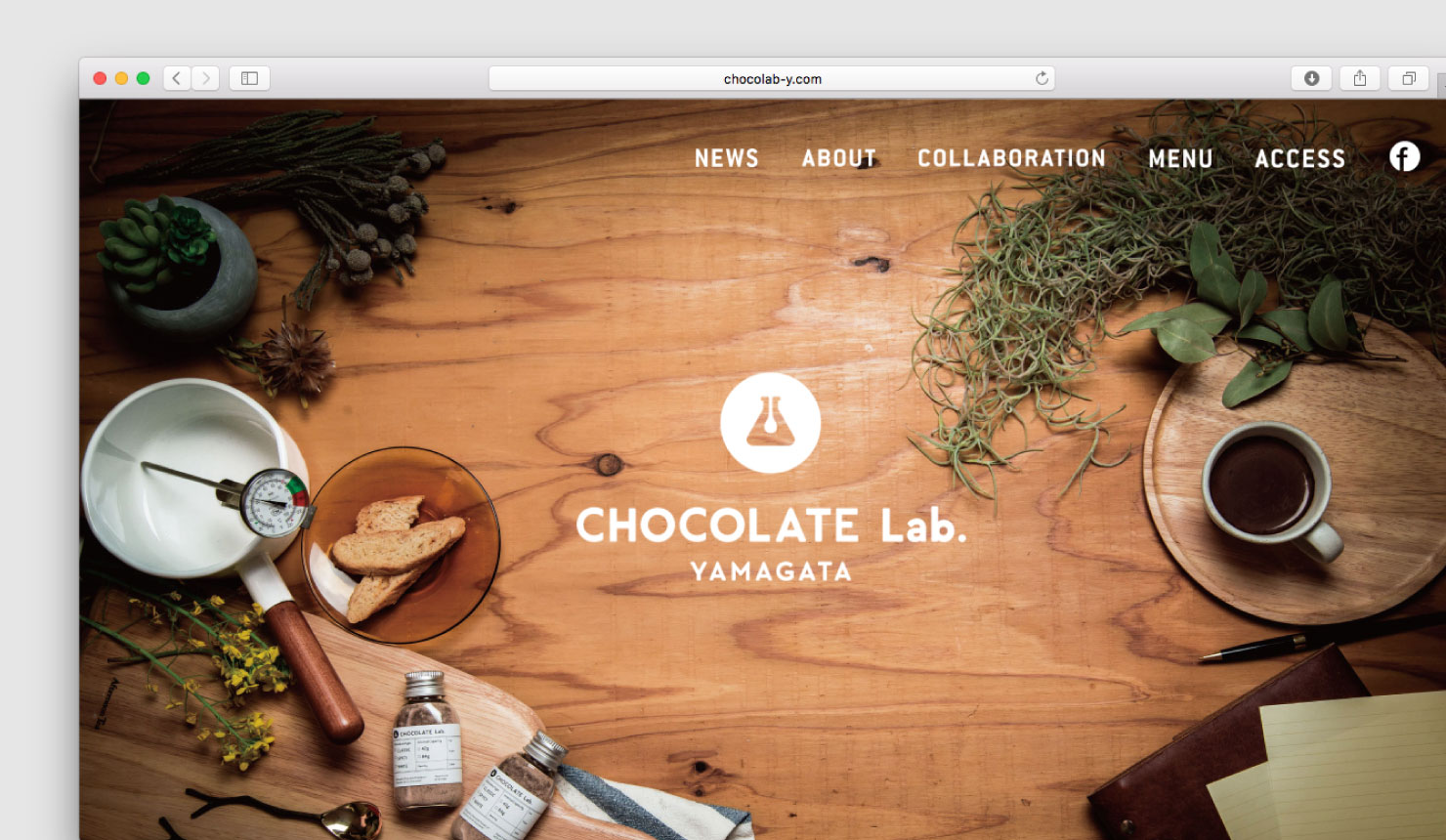 chocolate_lab