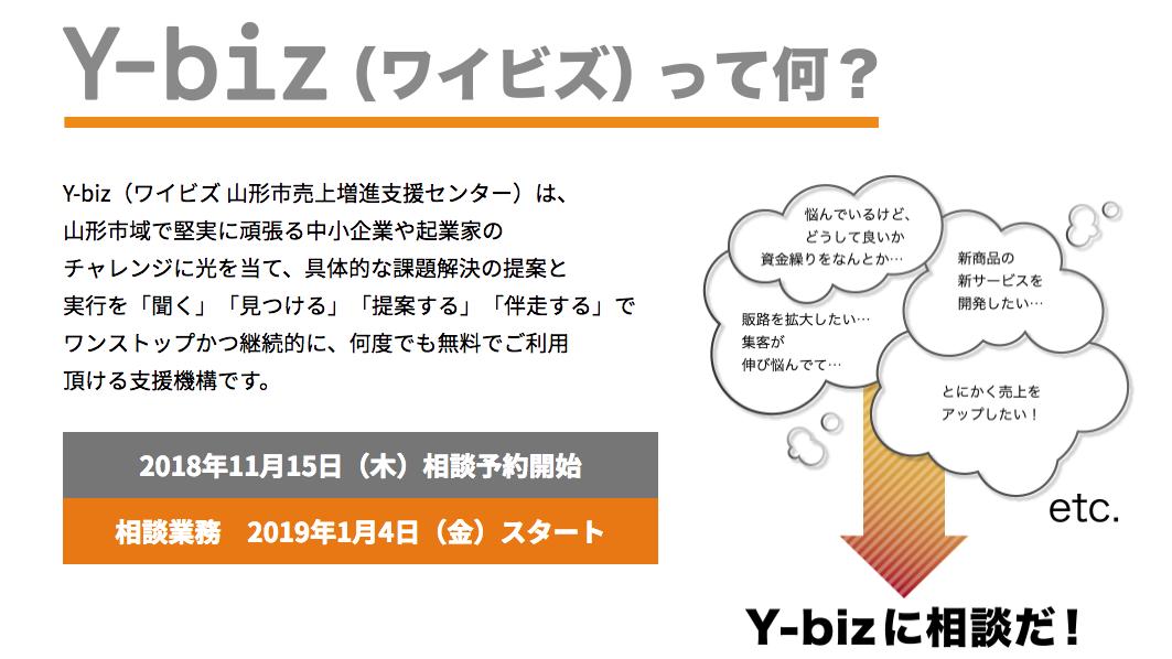 ybiz1901017